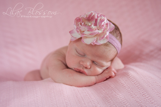 ©2013 Lilac Blossom Photography-30
